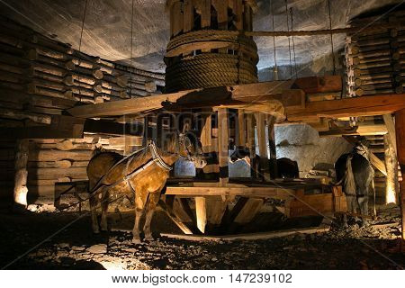 POLAND, WIELICZKA - MAY 28, 2016: Wieliczka Salt Mine.  In UNESCO World Heritage since 1978. POLAND, WIELICZKA - MAY 28, 2016: Wieliczka Salt Mine.  In UNESCO World Heritage since 1978. The lift on the horse-drawn.