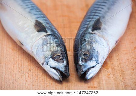 Two fresh raw mackerel lie on a wooden cutting board heads together.
