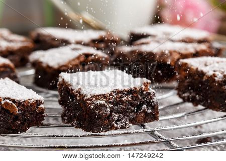 homemade chocolate brownies with icing sugar on a cake rack.