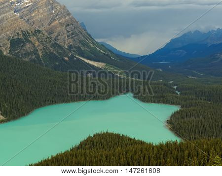 Vibrant Peyto Lake Surrounded by Rocky Mountains