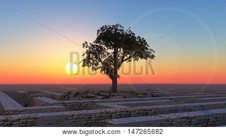 The tree image in a labyrinth in the morning 3D illustration
