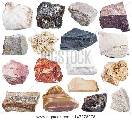 Set Of Sedimentary Rock Specimens