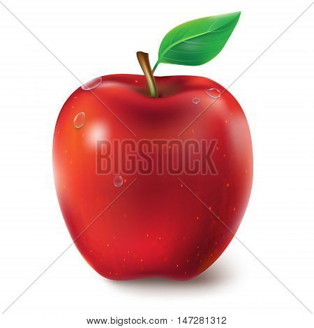 Vector illustration of a juicy red apple with leaf and dew drops