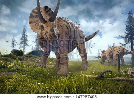 3D rendering of a group of Triceratops in Hell Creek about 67 million years ago.