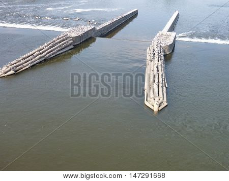 Many Pigeons Sitting Ona Wooden Structure In The River