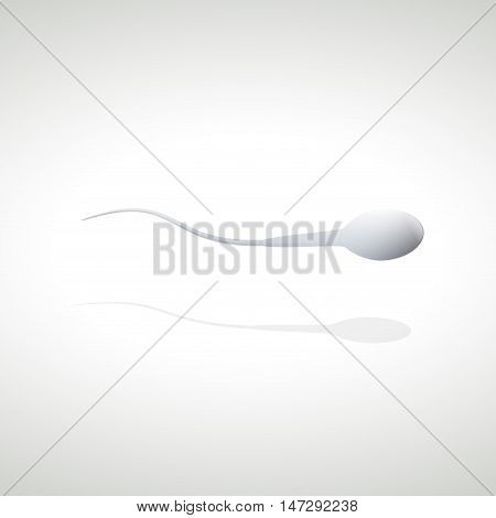 Abstract Human sperm cell and male fertility
