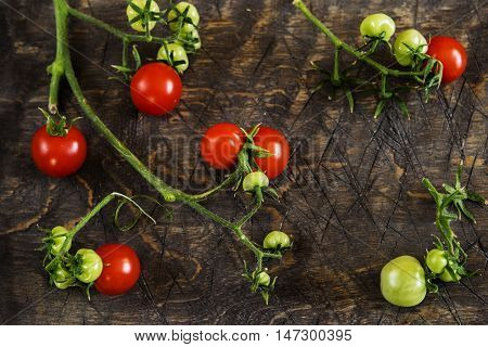 Cherry tomatoes on a branch on a dark wooden background
