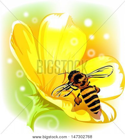 Whimsical Animal Illustration of a Honeybee Sucking Nectar from a Yellow Flower
