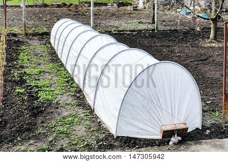 Small Greenhouse In Country Garden In Spring