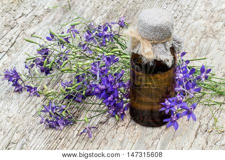 Medicinal plant Consolida regalis (Forking Larkspur Rocket-larkspur Field larkspur) and pharmaceutical bottle on old wooden table. It is used in herbal medicine good honey plant