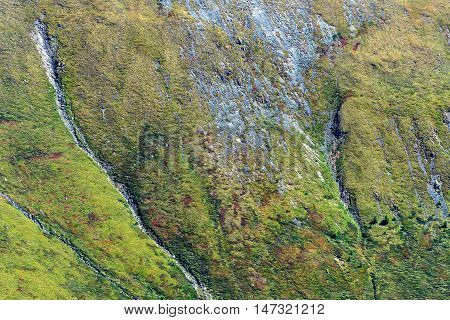 Bright beautiful abstract natural background of the mountain with fissure talus and sparse vegetation