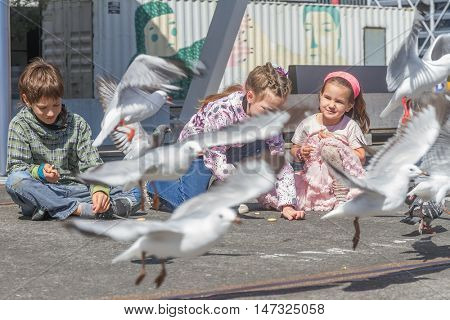 three young happy smiling kids feeding birds in park, auckland, new zealand
