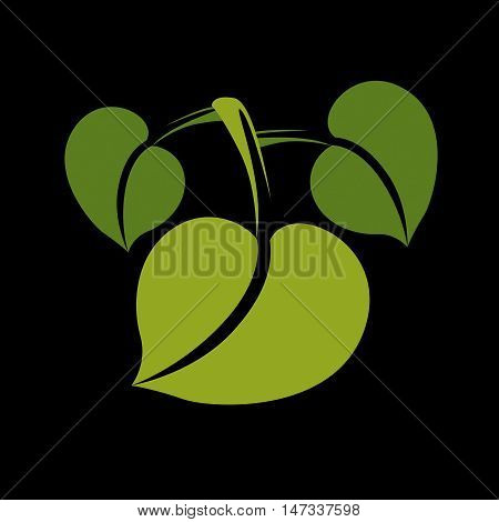 Three vector flat green leaves. Herbal and botany art symbol spring season stylized ecology icon. Environment conservation element.