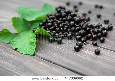 Fresh ripe black currants heap on rustic wood background. Natural organic berries with green leaves scattered on weathered grey wooden table, new berry harvest