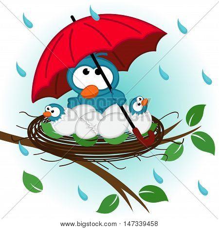 bird under umbrella in nest - vector illustration, eps