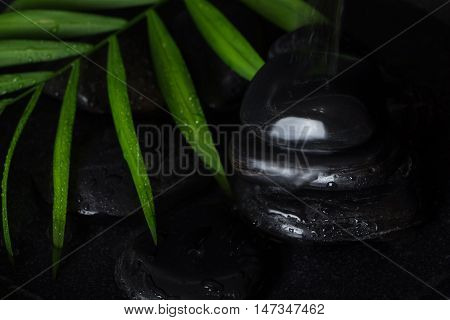 Wet Black Basalt Stones With Green Leaf And Running Water, On Black Background