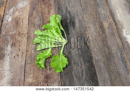 Chinese cabbage organic vegetables on a wooden table background Insect eat hole in the leaf.  and copy space .