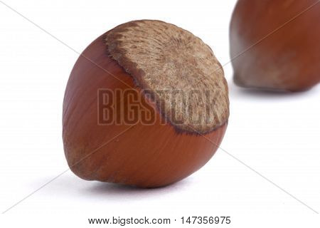 Hazelnut in the shells on the white