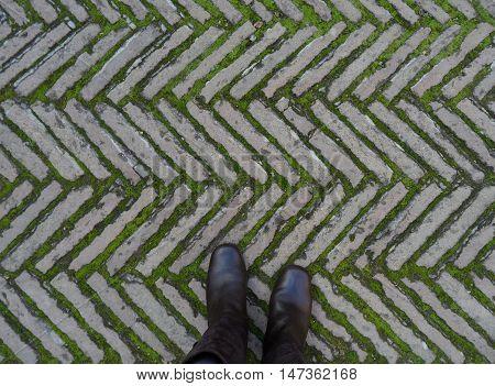 On the Cobblestone Walkway of Real Alcazar de Seville in Spain, Background, Pattern