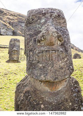 The Big Nosed Moai