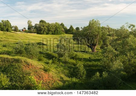 rural summer landscape with ravines and hills