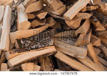 chaotic pile of wood from deciduous trees