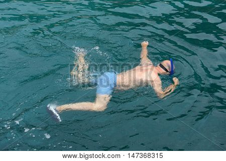 Man snorkelling in clear water to watch marine life.