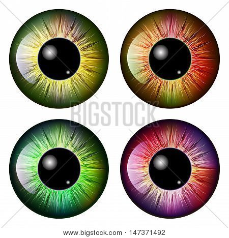 Eye, Pupil, Iris, Vector Symbol Icon Design. Beautiful Illustration Isolated On White Background