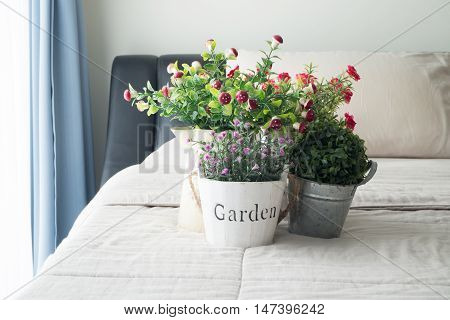 The bed with red common purslane flower Pink rose flower dwarf tree on the flower pot sunlight from windows.