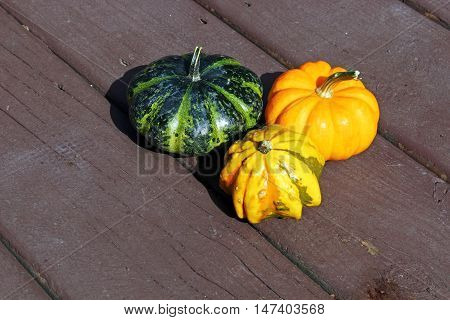 A varity of decorative Pumpkins on a wooden background.