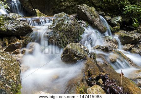 Stones and mountain river with small waterfall. Mountain river flowing through the green forest. Stream in the wood.
