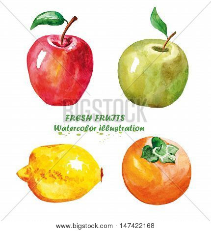 Watercolor apple lemon persimmon. Hand painted realistic illustration. Vintage design eco natural food fruit on white background.