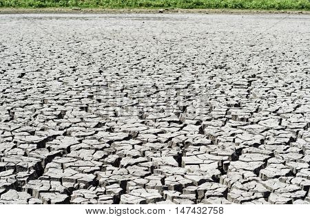 drought earth close up
