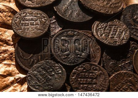 ancient copper coins of a half-ear of the eighteenth century in strong oxides against the background of dry leaves