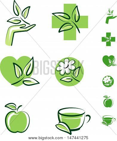 Vector set of herbal icons. Medical icons