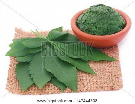 Mashed vitex Negundo or Medicinal Nishinda leaves