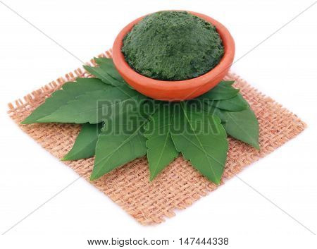 Vitex Negundo or Medicinal Nishinda leaves with paste in a pottery