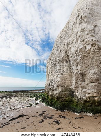 Popular White Cliffs Botany Bay La Manche English Channel Coast, Kent, England, United Kingdom