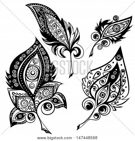 Plumes with ornament decor. Elements for design. Vector graphic.