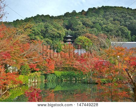 Tahoto Pagoda on the hillside with red leaves background at Eikan-do temple in Kyoto, Japan.