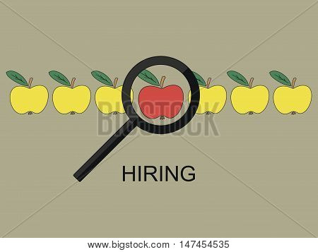 Number of yellow apples in the middle the red, by pointing to it with magnifying glass. Search