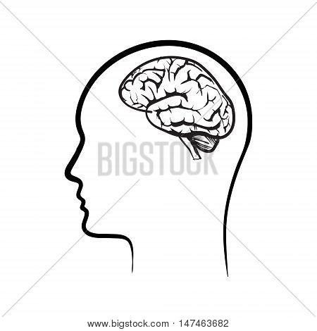 vector icon brain medical, think, intelligence, background