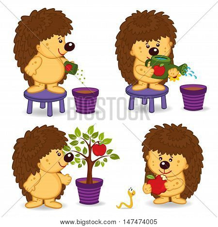 hedgehog grow  tree with apple - vector illustration, eps