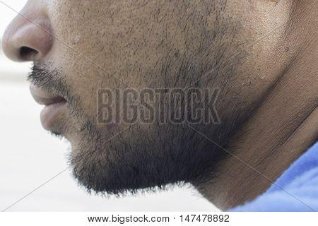 Beard closeup, isolated, model, guy, hairy, mustache,