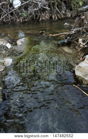Pollution In The Water,waste Water,the Impact Of Natural In The World.