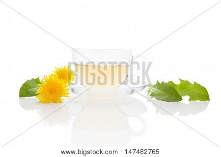 Dandelion tea background herbal remedy. Dandelion tea flower and leaves isolated on white background.