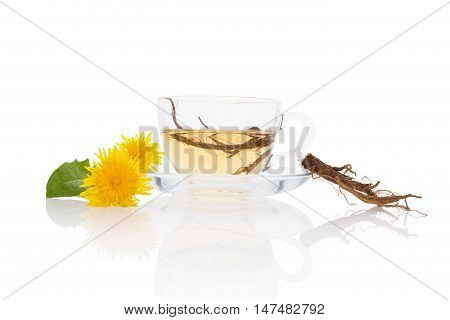 Dandelion tea background herbal remedy. Dandelion tea flower leaves and root isolated on white background.