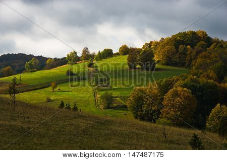 Meadows with autumn colors on a sunny morning, mountain Goc, Serbia