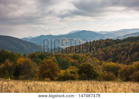 Overcast sky over meadow and forest in autumn colors, mountain Goc, Serbia