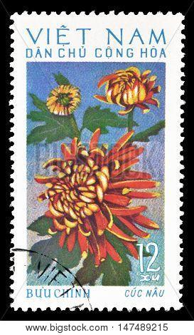 VIETNAM - CIRCA 1974 : Cancelled postage stamp printed by Vietnam, that shows Chrysanthemum.
